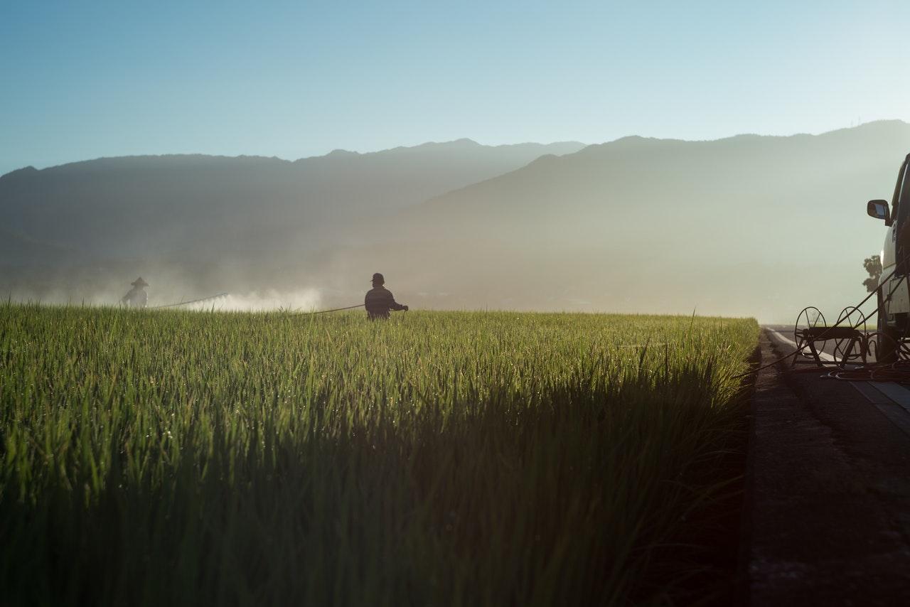 fumigation field farm